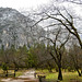 Bridalveil Fall - Yosemite National Park