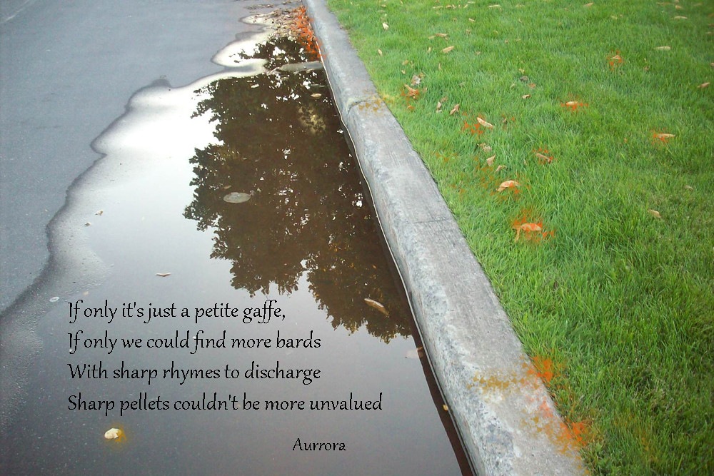 If Only Poem If Only Its Just A Petite Gaffe If Only W