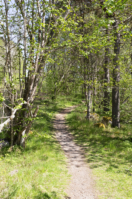Ågårdselva 2.1, Solli, Norway