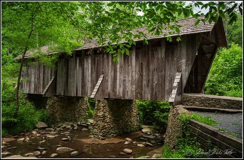 coveredbridge coveredbridges uwharrienationalforest nationalforest northcarolina northcarolinacoveredbridges