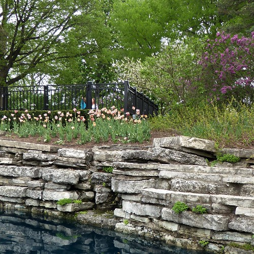 lombardil lilaciapark park garden nature flora plants blooms blossoms flowers spring pond water reflection stones wall limestone tulips lilacs fence trees