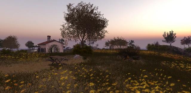 Beautiful horizon