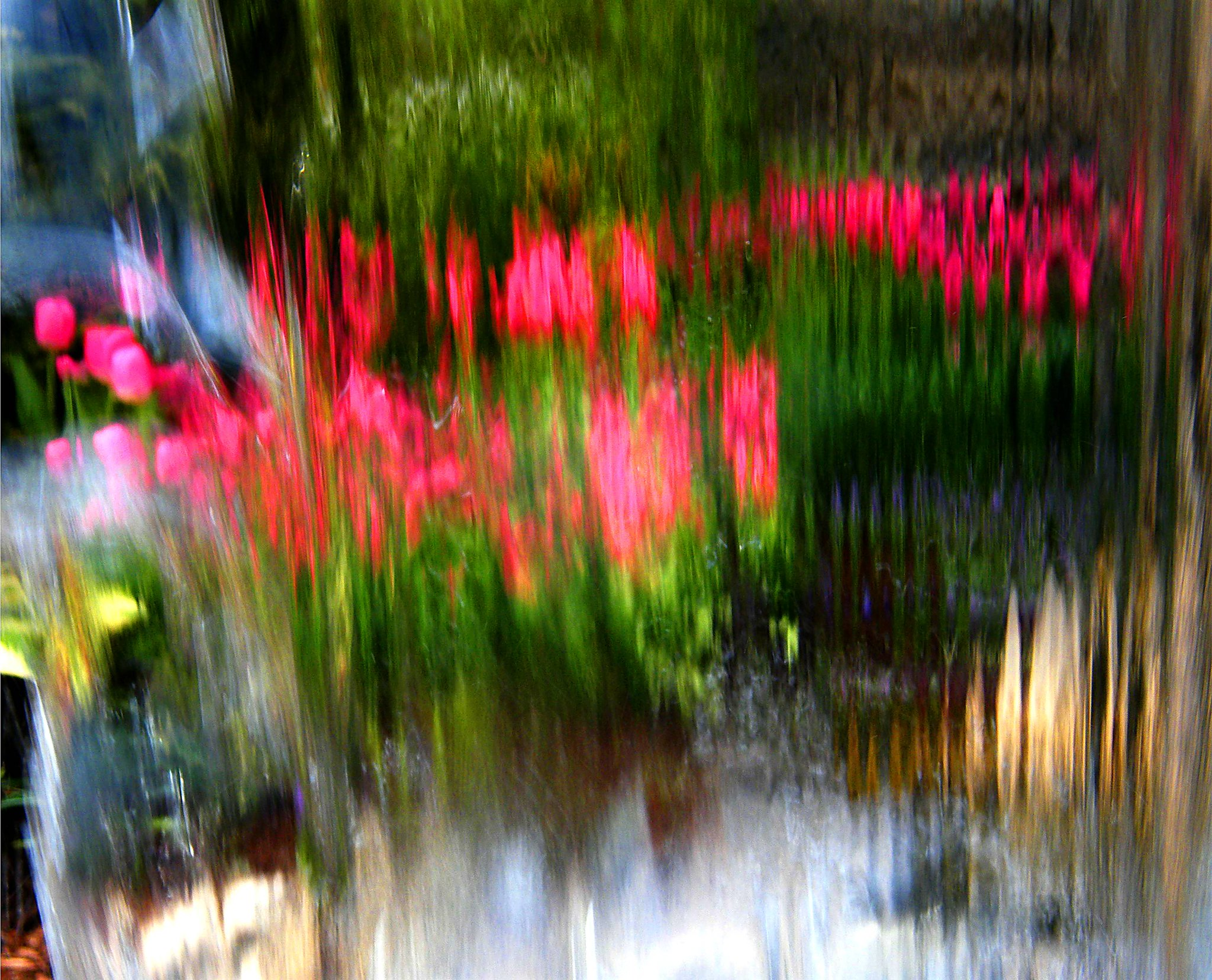 Abstract Flower Reflection
