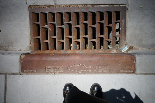 Dump No Waste - Drains To Waterways
