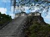Tikal, Acrópolis Norte, foto: Petr Nejedlý