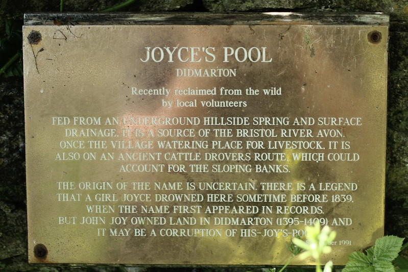 Joyce's Pool - one of the sources of the Sherston Avon (when weather permits)