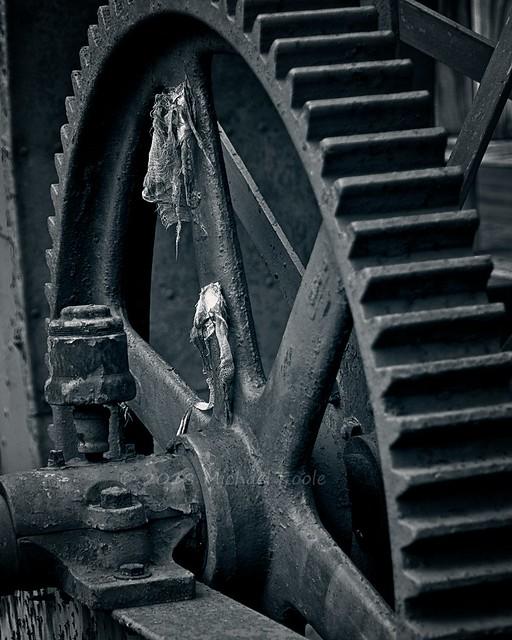 Mill Wheel Gear