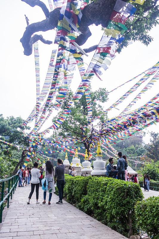 Nepal 2018_-17