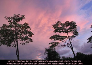BORNEO SKY - LATE AFTERNOON | by lindenhud1