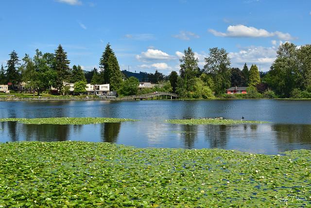 Mill Lake, Abbotsford