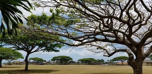 hawaii oahu mililani