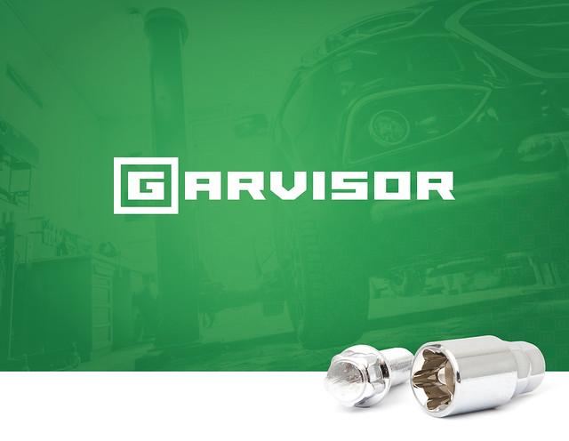 Brand identity / GarVisor