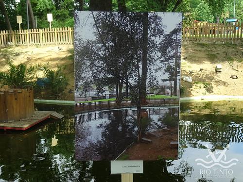 2018_06_02 - Inauguração da exposição de fotografias e entrega de prémios (76)
