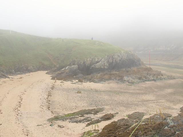 Nebel und Ebbe