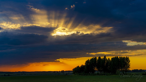 lithuania clouds colourful evening landscape nature sun sunset tree view beautiful