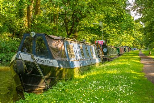 walk staffordshireworcestershirecanal england uk summer 2018 canal water waterways towpath narrowboats boats transport sunlight shade shadows outdoor landscape green nikon d7100 nikon50mmf18g