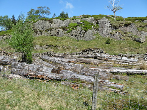 61 - Years old forestry debris at Fisher Crag | by samashworth2