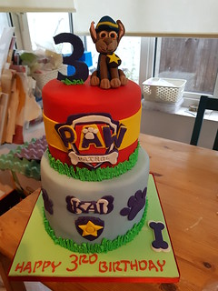 Two tiered Paw Patrol birthday cake. | by platypus1974