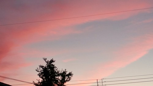 sunrise cottoncandy pink blue sky
