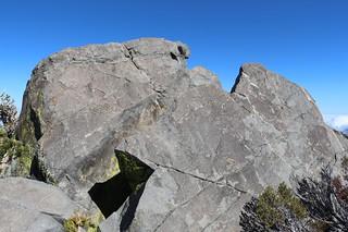 145 The dark granite summit blocks of Harvard Peak - there was a deep slot between them so we didn't climb it | by _JFR_