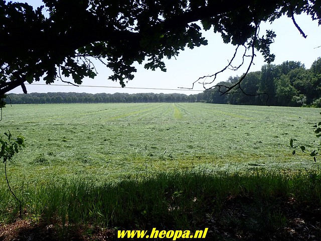 2018-06-06     10e  Utrechtse- Heuvelrugtocht   24 Km (58)