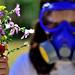 Los alérgicos también disfrutamos de la Primavera