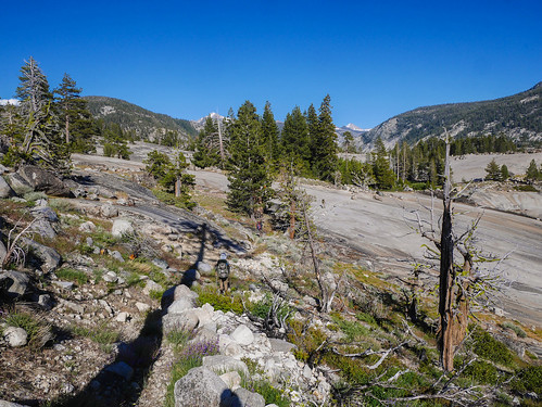 Crossing granite domes above Merced Canyon | by snackronym