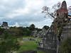 Tikal, Great plaza, vpravo Temple I – pyramida Velkého jaguára, vlevo Temple II, foto: Petr Nejedlý