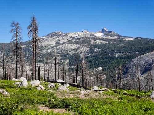 Mount Clark from the burn area above Merced Canyon | by snackronym