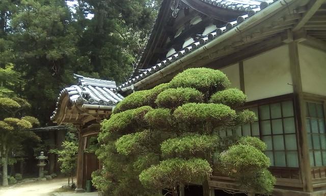 Buddhist Temple, Mount Shosha, Himeji, Japan