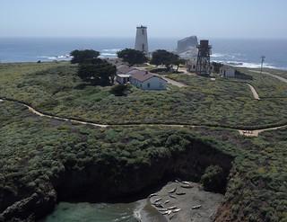 Piedras Blancas Lighthouse and Elephant Seals