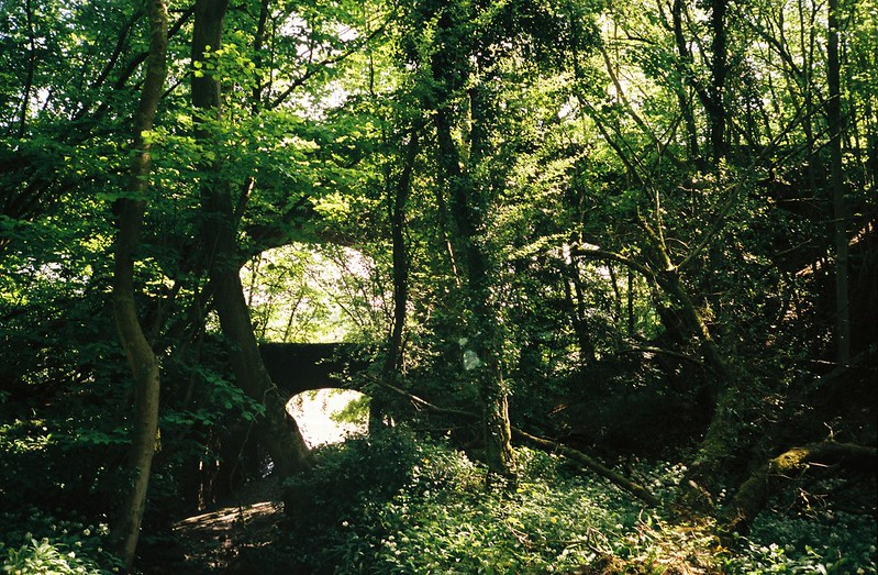 The viaducts over the stream where Paradise Bottom meets the Avon
