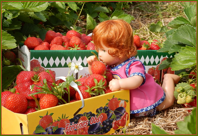 Erdbeeren ... sooo lecker ...