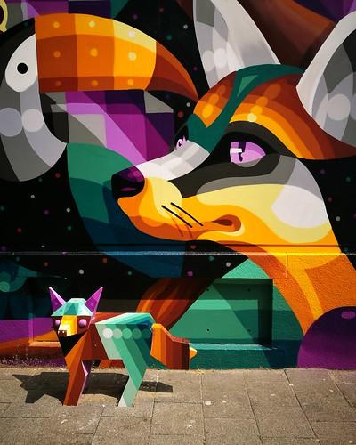 nieuwe_binnenweg_foxes | by anuhaa
