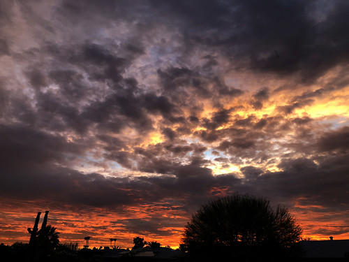 arizona sunset winter sky cloud outdoor dusk serene field landscape bright skyline tree grass sun city west colorful color tonight monsoon weather clouds summer fall silhouette colros sunshower shower backyard nikon cactus hardtosee bombcyclone