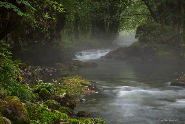 Potok Curak