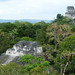 Tikal, pohled z chrámu IV směrem na Mundo Perdido, foto: Petr Nejedlý