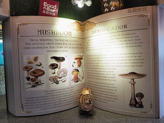 Some writes up about mushroom from Wikipedia   by huislaw
