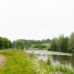 Thames Jubilee River 10km swim