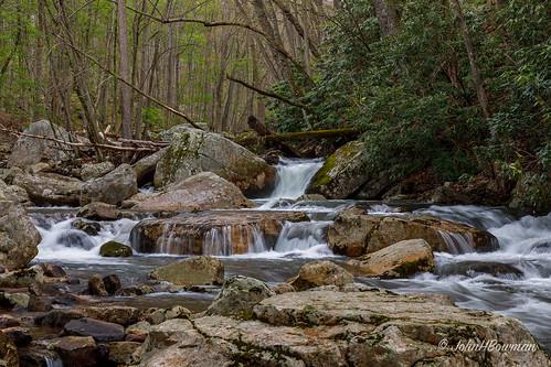 virginia gilescounty nationalforests jeffersonnf virginiamountains cascadesrapids riversandstreams littlestonycreek waterfalls virginiawaterfalls spring april2018 april 2018 canon24704l