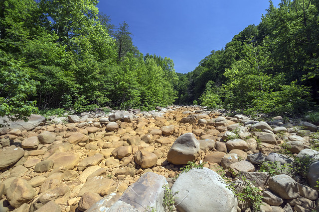East Fork Obey River (dry), Fentress County, Tennessee 1