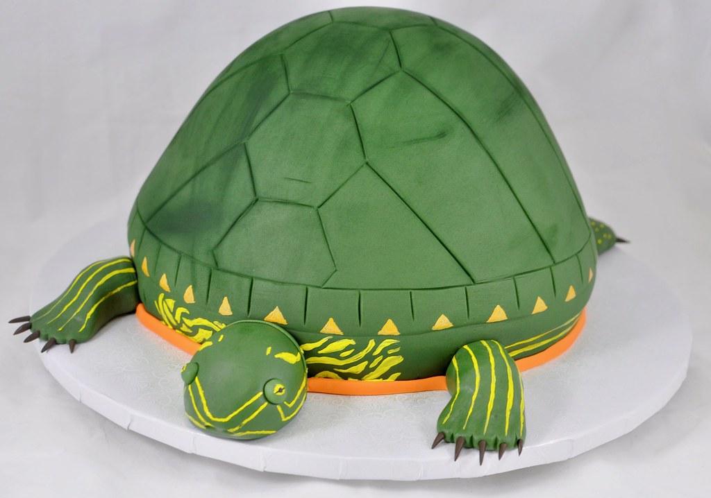 Pleasant Turtle Birthday Cake Jenny Wenny Flickr Funny Birthday Cards Online Alyptdamsfinfo
