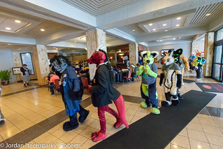 AnthrOhio-2018_techsparky-246 | by techsparkyfurtography