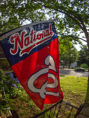 Flying the Nationals banner!