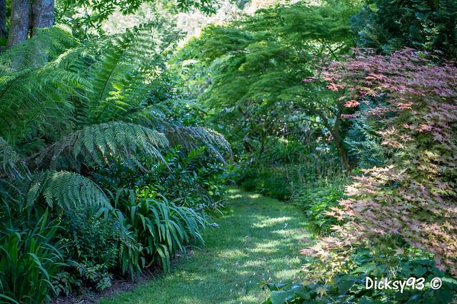 Les jardins de Ker Louis Plévenon