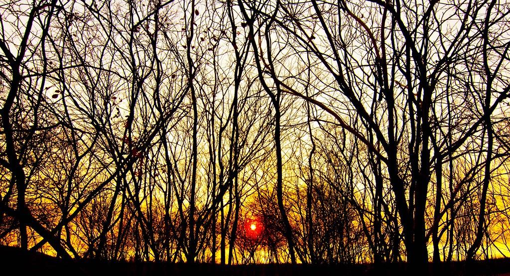 O Sol Nasce Novamente