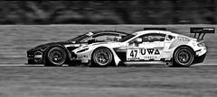 GT3 2018 b and w - 3