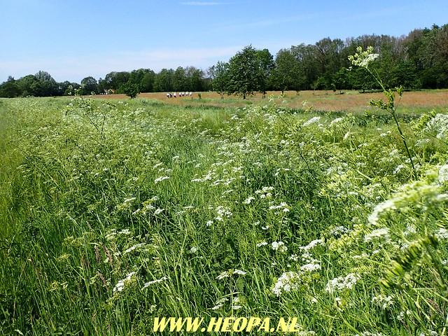 2018-05-24        1e Dag Diever      40 Km (82)