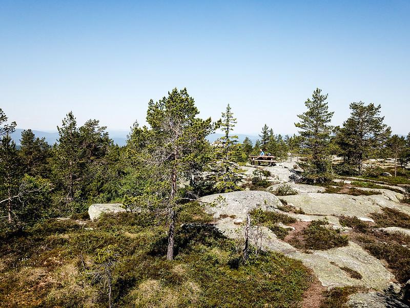 20-Nesfjell