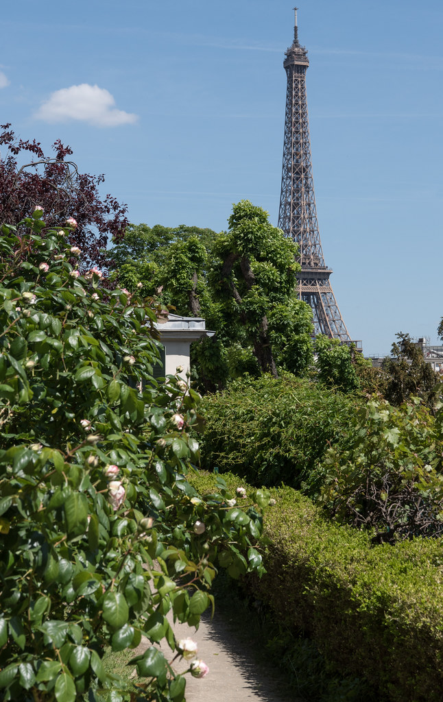 Jardin de la maison de Balzac (Paris, France) | Denis Trente ...